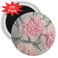 Cloves Flowers Pink Carnation Pink 3  Magnets (100 Pack) by Amaryn4rt