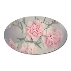 Cloves Flowers Pink Carnation Pink Oval Magnet by Amaryn4rt