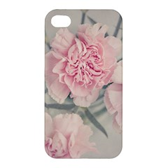 Cloves Flowers Pink Carnation Pink Apple Iphone 4/4s Premium Hardshell Case by Amaryn4rt