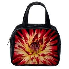 Bloom Blossom Close Up Flora Classic Handbags (one Side) by Amaryn4rt