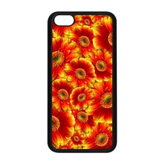 Gerbera Flowers Blossom Bloom Apple Iphone 5c Seamless Case (black) by Amaryn4rt