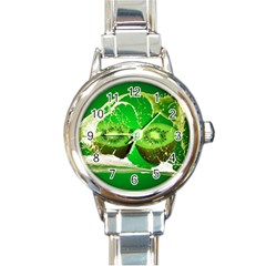 Kiwi Fruit Vitamins Healthy Cut Round Italian Charm Watch by Amaryn4rt