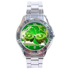 Kiwi Fruit Vitamins Healthy Cut Stainless Steel Analogue Watch by Amaryn4rt