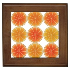 Orange Discs Orange Slices Fruit Framed Tiles by Amaryn4rt