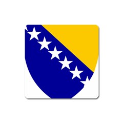 Coat Of Arms Of Bosnia And Herzegovina Square Magnet by abbeyz71
