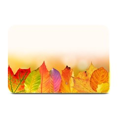 Autumn Leaves Colorful Fall Foliage Plate Mats by Amaryn4rt