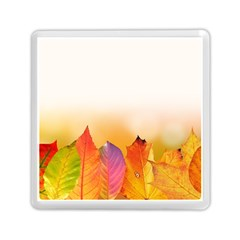 Autumn Leaves Colorful Fall Foliage Memory Card Reader (square)  by Amaryn4rt