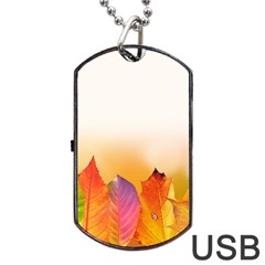 Autumn Leaves Colorful Fall Foliage Dog Tag Usb Flash (one Side) by Amaryn4rt