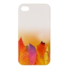 Autumn Leaves Colorful Fall Foliage Apple Iphone 4/4s Hardshell Case by Amaryn4rt