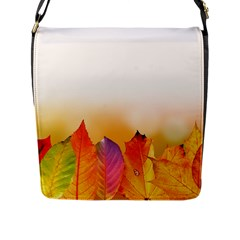 Autumn Leaves Colorful Fall Foliage Flap Messenger Bag (l)  by Amaryn4rt