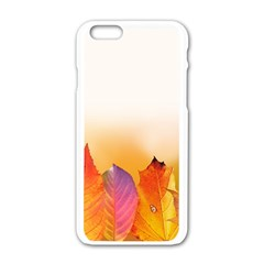 Autumn Leaves Colorful Fall Foliage Apple Iphone 6/6s White Enamel Case by Amaryn4rt