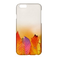 Autumn Leaves Colorful Fall Foliage Apple Iphone 6 Plus/6s Plus Hardshell Case by Amaryn4rt