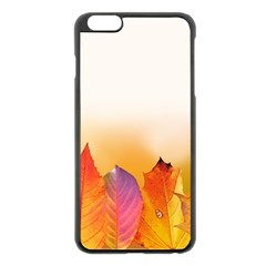 Autumn Leaves Colorful Fall Foliage Apple Iphone 6 Plus/6s Plus Black Enamel Case by Amaryn4rt