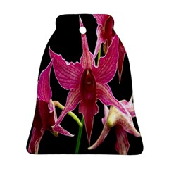 Orchid Flower Branch Pink Exotic Black Bell Ornament (2 Sides) by Jojostore