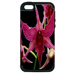 Orchid Flower Branch Pink Exotic Black Apple Iphone 5 Hardshell Case (pc+silicone) by Jojostore