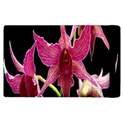 Orchid Flower Branch Pink Exotic Black Apple Ipad 3/4 Flip Case by Jojostore