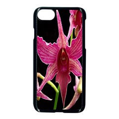Orchid Flower Branch Pink Exotic Black Apple Iphone 7 Seamless Case (black) by Jojostore