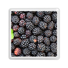 Blackberries Background Black Dark Memory Card Reader (square)  by Amaryn4rt
