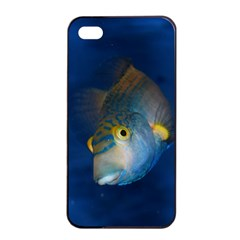 Fish Blue Animal Water Nature Apple Iphone 4/4s Seamless Case (black)