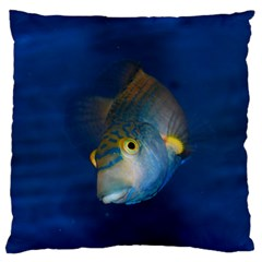 Fish Blue Animal Water Nature Large Cushion Case (one Side) by Amaryn4rt