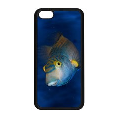 Fish Blue Animal Water Nature Apple Iphone 5c Seamless Case (black) by Amaryn4rt
