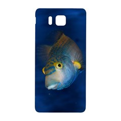 Fish Blue Animal Water Nature Samsung Galaxy Alpha Hardshell Back Case by Amaryn4rt