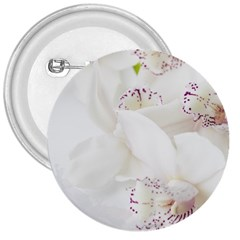 Orchids Flowers White Background 3  Buttons by Amaryn4rt
