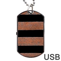 Stainless Rust Texture Background Dog Tag Usb Flash (two Sides)  by Amaryn4rt