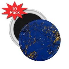 Poplar Foliage Yellow Sky Blue 2 25  Magnets (10 Pack)  by Amaryn4rt
