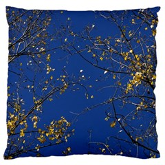Poplar Foliage Yellow Sky Blue Large Cushion Case (one Side) by Amaryn4rt