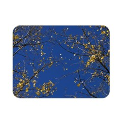 Poplar Foliage Yellow Sky Blue Double Sided Flano Blanket (mini)