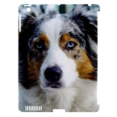 Australian Shepherd Blue Merle 3 Apple iPad 3/4 Hardshell Case (Compatible with Smart Cover) by TailWags