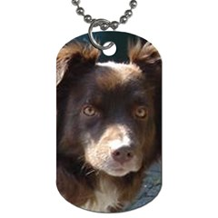 Australian Shepherd Red Tri Dog Tag (two Sides) by TailWags
