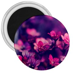 Blurry Flowers 3  Magnets by Brittlevirginclothing