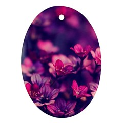 Blurry Flowers Ornament (oval) by Brittlevirginclothing