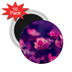 Blurry Flowers 2 25  Magnets (10 Pack)  by Brittlevirginclothing