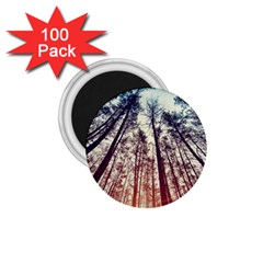 Up View Forest 1 75  Magnets (100 Pack)  by Brittlevirginclothing