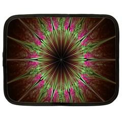 Julian Star Star Fun Green Violet Netbook Case (large) by Amaryn4rt