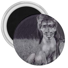 King And Queen Of The Jungle Design  3  Magnets by FrontlineS
