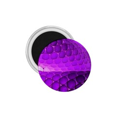 Circular Color 1 75  Magnets by Amaryn4rt