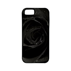 Black Rose Apple Iphone 5 Classic Hardshell Case (pc+silicone) by Brittlevirginclothing