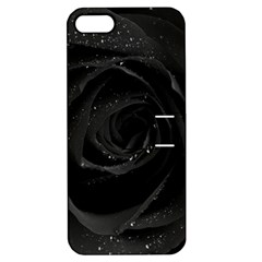 Black Rose Apple Iphone 5 Hardshell Case With Stand by Brittlevirginclothing