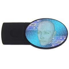Digital Pattern Usb Flash Drive Oval (2 Gb) by Amaryn4rt