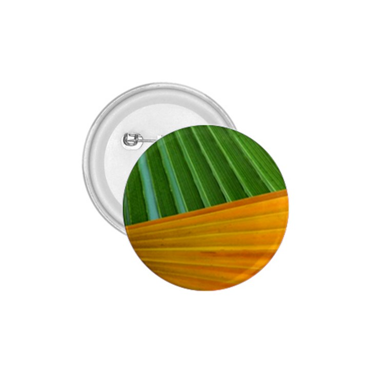 Pattern Colorful Palm Leaves 1.75  Buttons