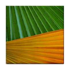 Pattern Colorful Palm Leaves Face Towel by Amaryn4rt