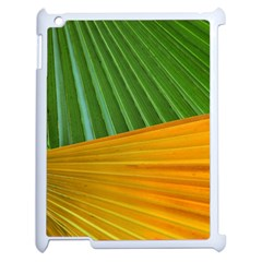 Pattern Colorful Palm Leaves Apple Ipad 2 Case (white) by Amaryn4rt