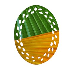 Pattern Colorful Palm Leaves Oval Filigree Ornament (two Sides) by Amaryn4rt