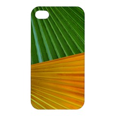 Pattern Colorful Palm Leaves Apple Iphone 4/4s Premium Hardshell Case by Amaryn4rt