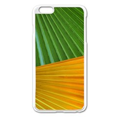 Pattern Colorful Palm Leaves Apple Iphone 6 Plus/6s Plus Enamel White Case by Amaryn4rt