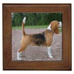 Beagle Full 2 Framed Tiles by TailWags